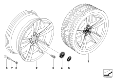 BMW LA wheel, star spoke 189